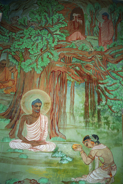 Vipallasa: Our views bend our perceptions to agree with the view. The perceptions then form the evidence for out thoughts. Then the thoughts argue in support of our view. It is a self-justifying cycle. This is the very process of delusion. —Buddha <i>L0971 wall paintings, Dhamekh Stupa, Sarnath</i>