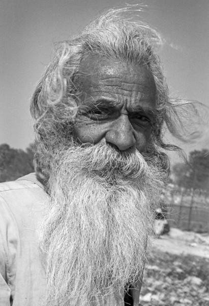 The sage does not talk, the talented ones talk, and the stupid ones argue.  —Kung Tingan <i> L2122 sadhu </i>