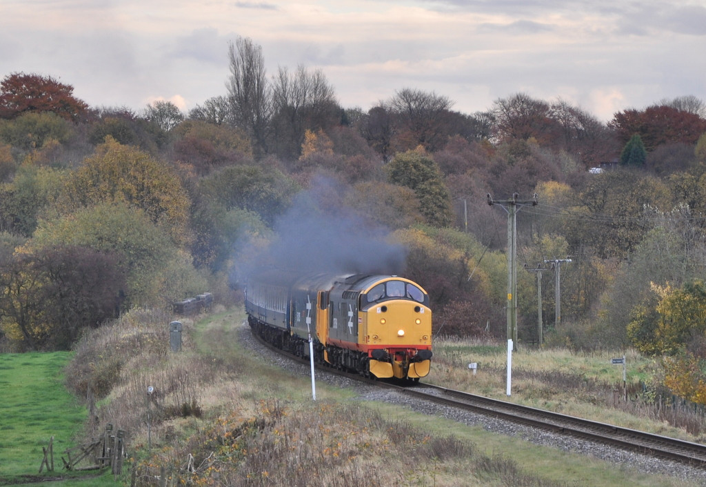 37518 and 50015, Burrs.