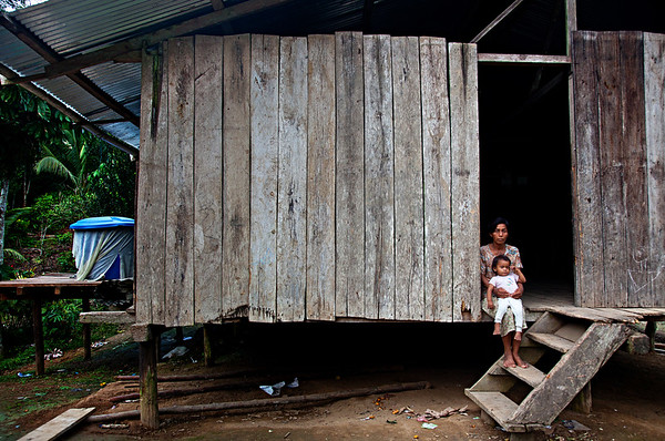 House on stilts, jungle of Ecuador. 2011