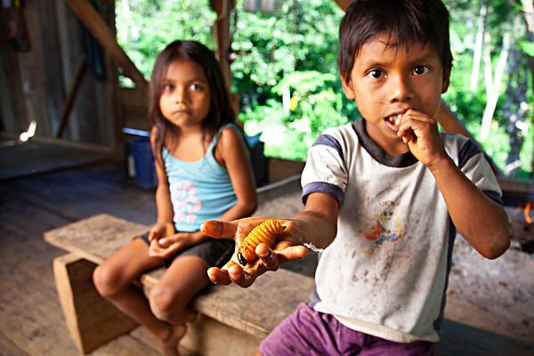 Grubs, after dinner treats in jungles of Ecuador. 2011