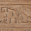 Panel of hieroglyphics at Edfu temple.