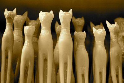 Cats - Morrsey Alabaster Factory, Luxor