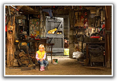 The beauty in the shed