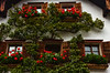 Beautiful flower boxes and vines on a house in Hallstatt.<br /> Photo © Cindy Clark