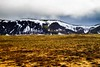 Tundra and snow covered basalt hills near Þingvallavatn.<br /> Photo © Carl Clark