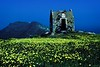 Flowers and a ruin on the walk from Fira to Oia on Santorini, Cyclades Islands, Greece. <br /> Photo © Carl Clark