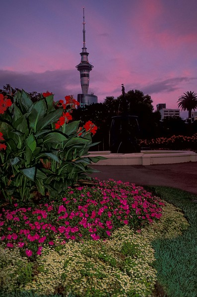 Spring flowers frame Sky Tower in Auckland, New Zealand. <br /> Photo © Carl Clark