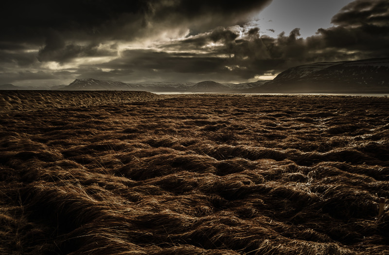 It's been described as an alien landscape - would you agree? Iceland.<br /> Photo © Cindy Clark