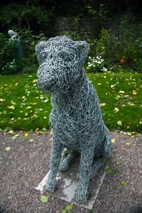 Blarney dog