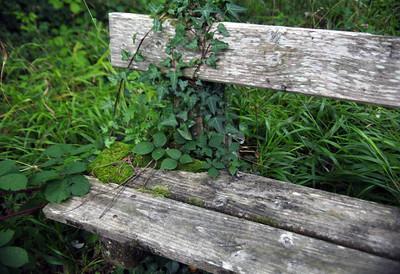 Blarney bench