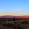 Sandia Mountains and Admirer, Albuquerque, NM