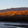 Rio Grande, Albuquerque, NM