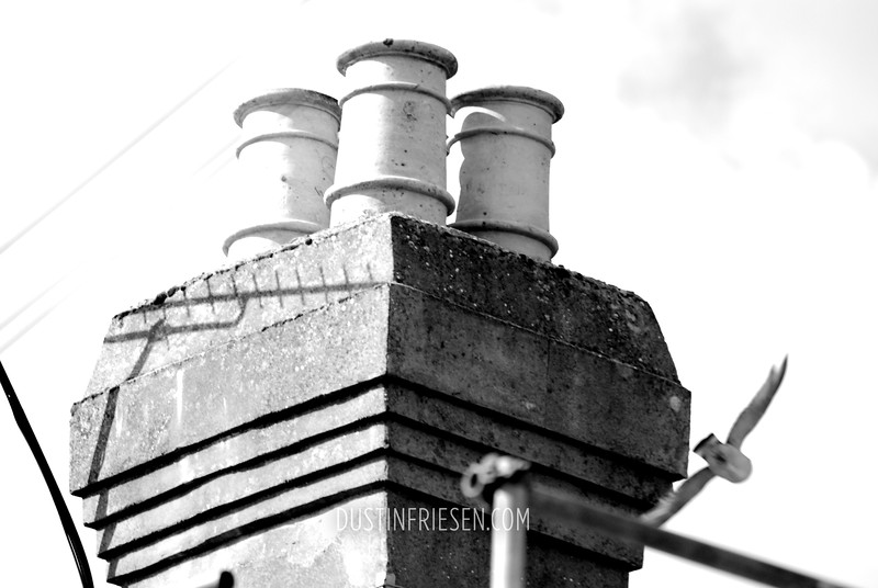 chimneys & seagull
