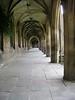 Halls of Academe