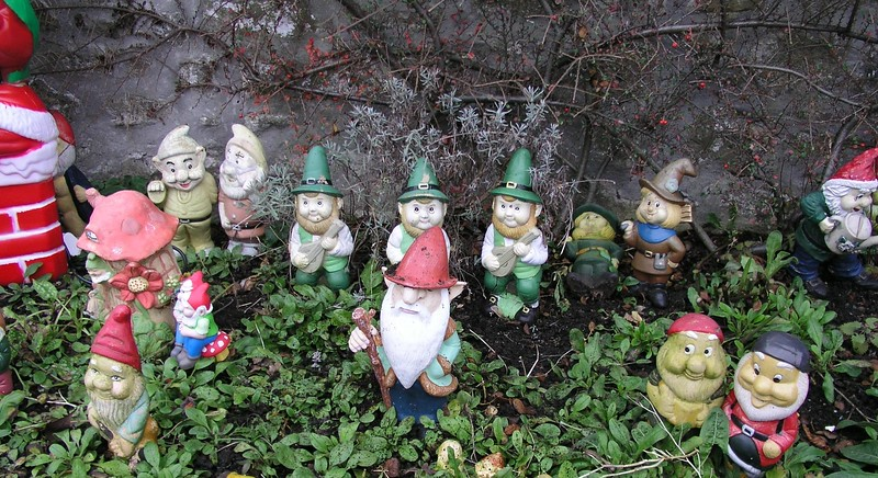 Where Gnomes Roam