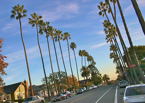 View down Maryland Avenue, University Heights neighborhood, San Diego, CA