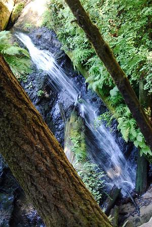 Russian Gulch Falls- Russian Gulch Falls State Park, CA