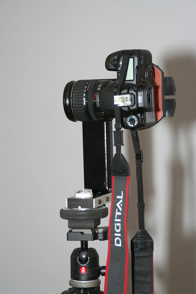 Canon 40D with 28-135 lens mounted on Panosaurus head.