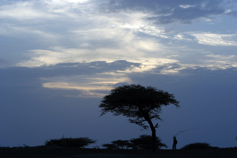 Silhouette of Oromo Boy with Whip in the planes above lake Langono, Ethiopia
