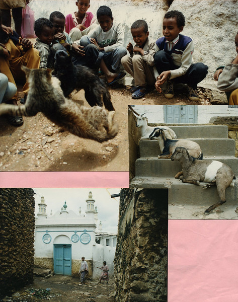 Cat Fight, Harar, Ethiopia (top), Three goats resting on steps in Harar, Ethiopia (center), one of the 99 Mosques in Harar, Islam's 4th holiest city (bottom)