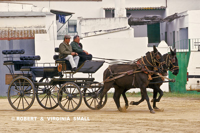 CARRIAGE ON A SANDY STREET OF EL ROCIO, SPAIN