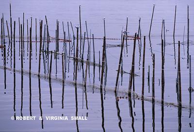FISHING NETS - SPAIN