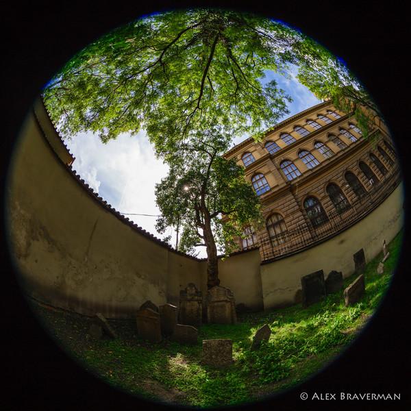 Old Jewish Cemetery, Prague #63