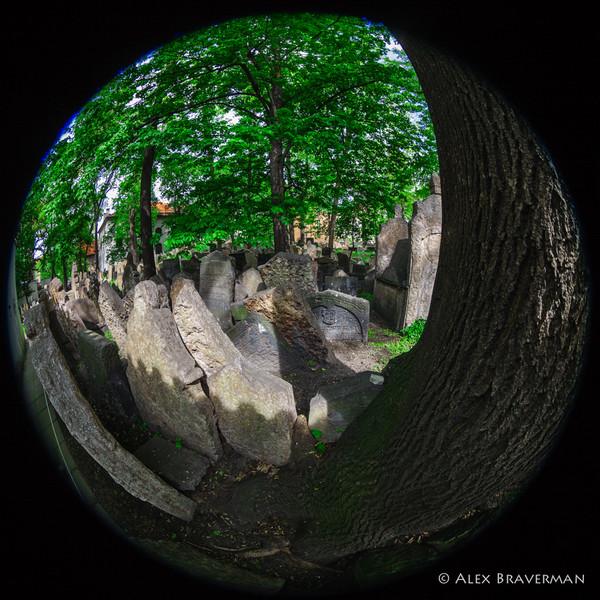 Old Jewish Cemetery, Prague #51