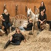 Spirit's Promise Equine Rescue photo shoot/directors