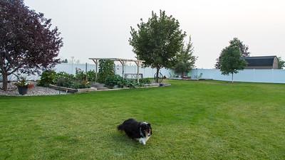 Shelley, Idaho - September 5, 2017