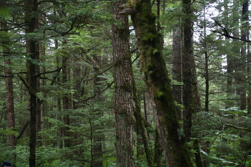 Juneau 574