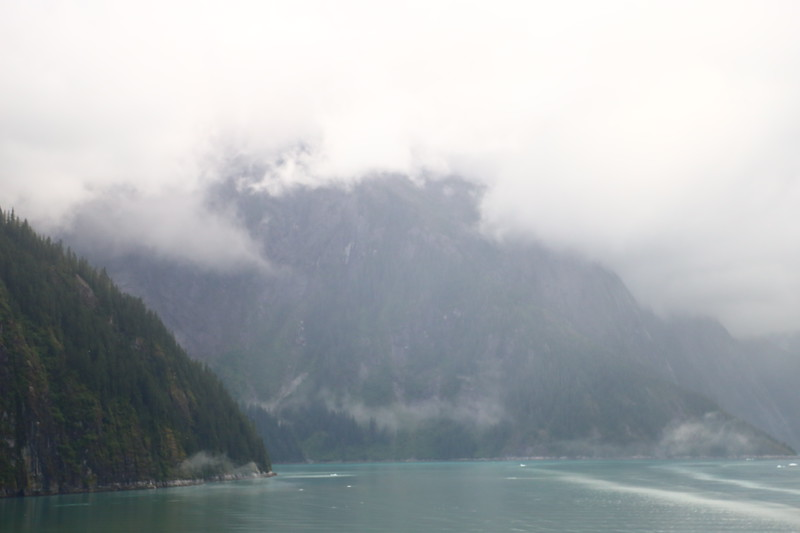 Tracy Arm Fjord 449