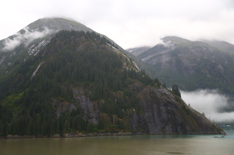 Tracy Arm Fjord 452