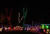 2011 Christmas Lights-157