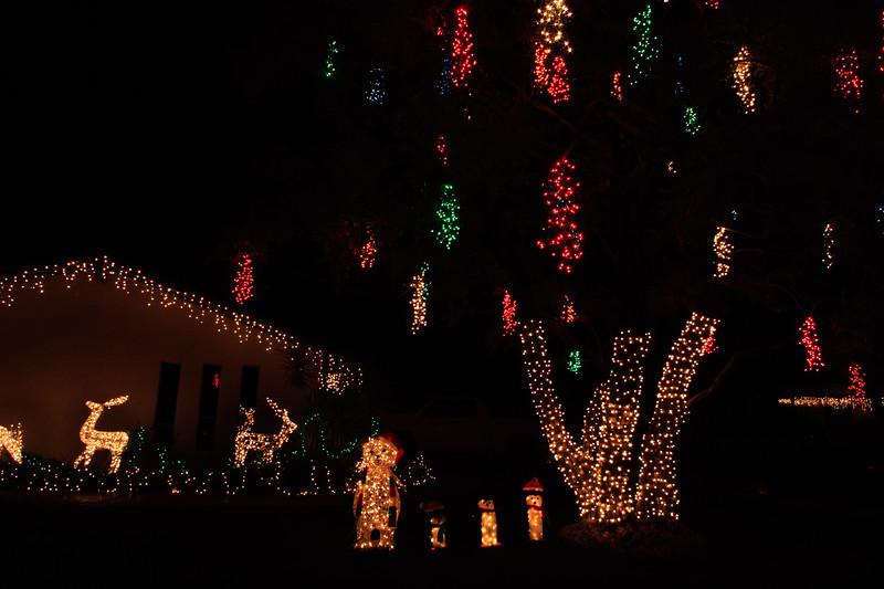 2011 Christmas Lights-170
