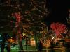 Glendale, AZ-Christmas 2007-105