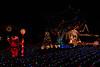 2011 Christmas Lights-151