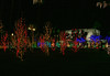 Mesa, AZ-Christmas 2007-107