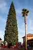 Christmas 2012-12-01-105