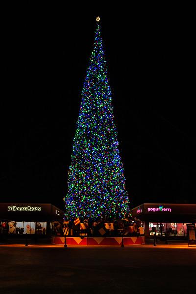 2011 Christmas Lights-109