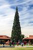AZ-Phoenix-Christmas-2007-119