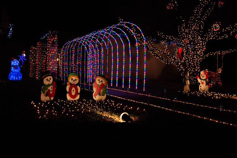 2011 Christmas Lights-136