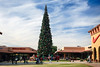 AZ-Phoenix-Christmas-2007-118
