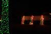 2011 Christmas Lights-155