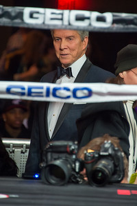 NEW YORK, NY - JANUARY 09:  Michael Buffer attend 2015 Throne Boxing Fight Night at The Theater at Madison Square Garden on January 9, 2015 in New York City. (Photo BleacherCreatures.tv/Corbis)