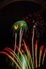 Fireworks 2013-07-04-153