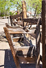Sahuaro Park 2013-03-31-150