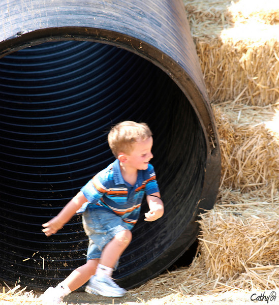 Suisun Valley Family Fun Day