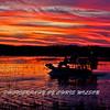 Everglades_01-21-12_0298